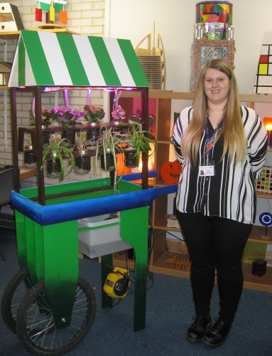 Brina Johnson - sustainable indoor planting systen - A lever runner up