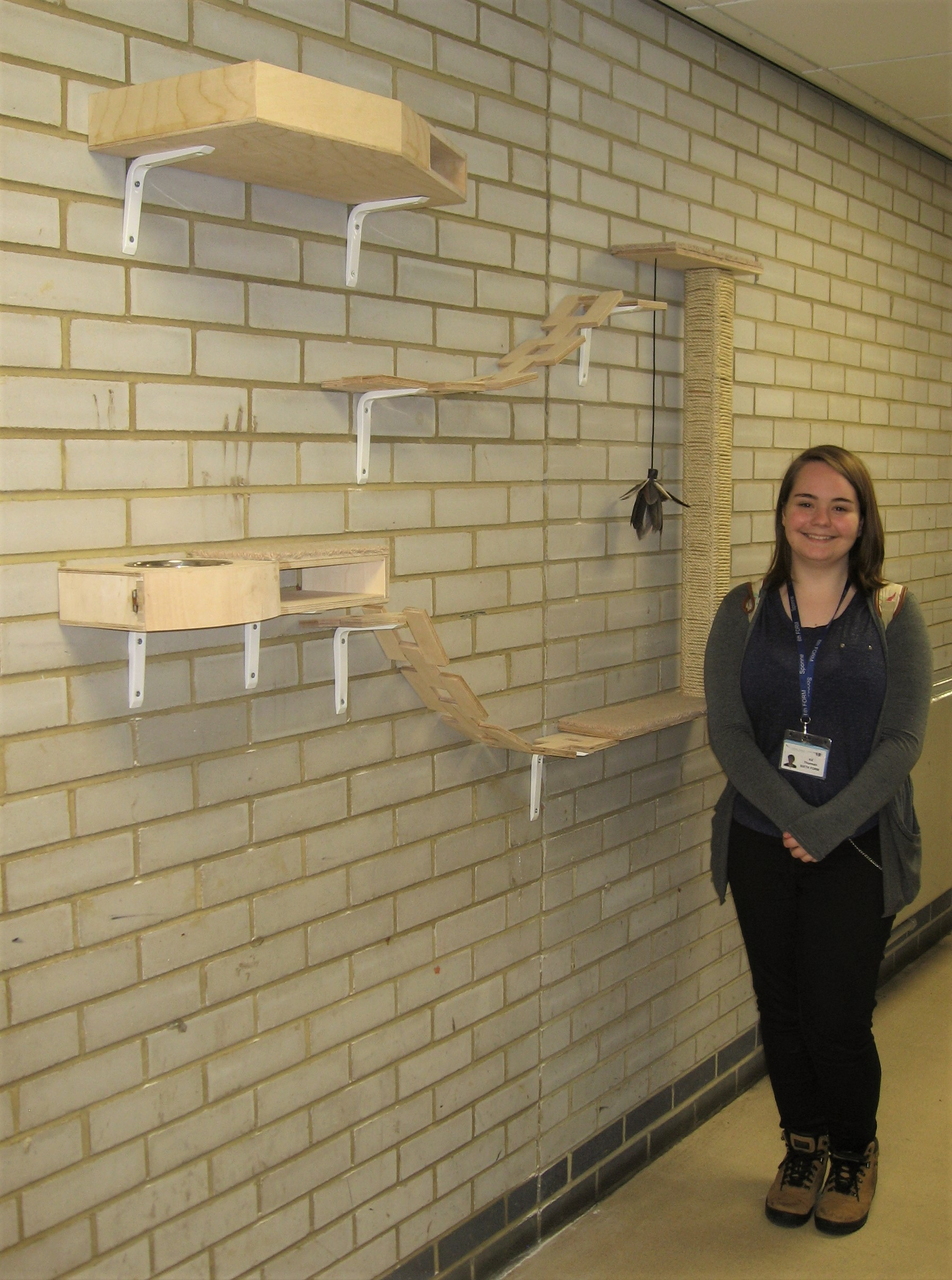 Kit Thurman - Cat furniture - wall-mounted - A Level winner